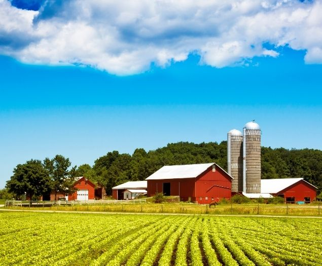 A farm in Indiana on a bright summer day